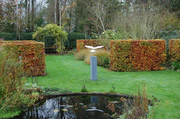 tuinbeeld vogel valk