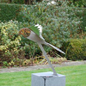 bird image falcon in garden
